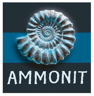 Ammonit-spiel