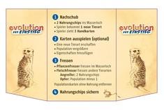 evolution der EINSTIEG