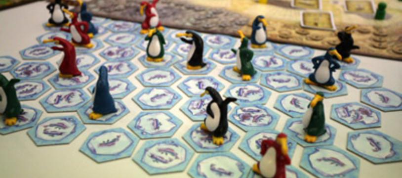 Les plus beaux pingouins du monde