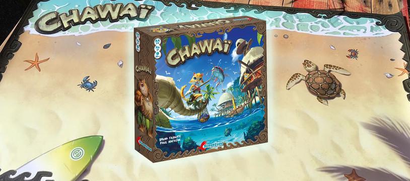 Chawaï : Le chat Pacha pêcha !