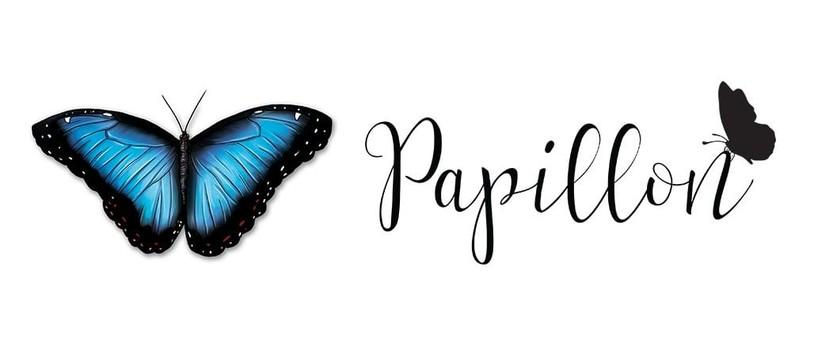 Entretien avec l'illustratrice de Papillon