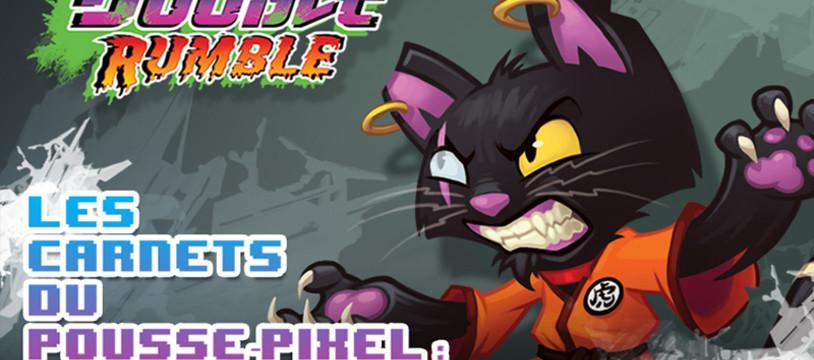 Les Carnets du Pousse-Pixels : Double Rumble, Stage 2...