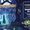 Journée découverte : Nemeton