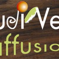 Ludi'Vert Diffusion