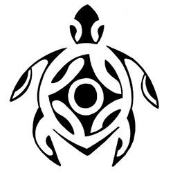 Wushu Tortue