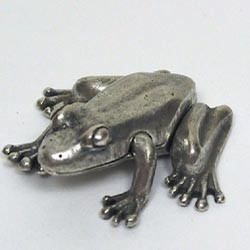 Silver Frog